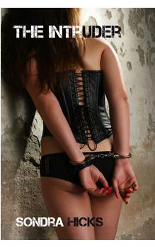 The Intruder, by Sondra Hicks: Free Erotic Romance, Instafreebie Erotica